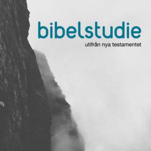 Bibelstudie utifrån nya testamentet @ Centrumkyrkan | Jönköpings län | Sverige