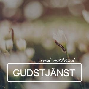 10.00 Gudstjänst med nattvard @ Centrumkyrkan   Jönköpings län   Sverige